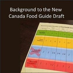 Background to the New  Canada Food Guide Draft
