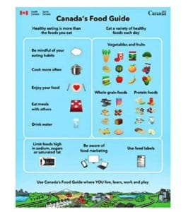 Canada's food guide healthy eating freebie by angel's primary.
